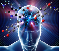 Catecholamine Sensitive Assays: Product Highlights