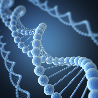 MutaGEL® Oxidative Stress I PCR Assay