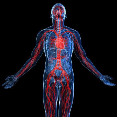 Antioxidant Capacity Potential Assay